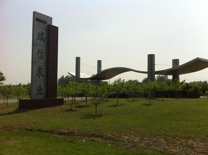 江苏瑞信生态农业有限公司获得成子湖奇异果园基地建设