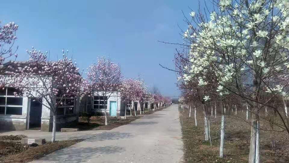 江苏瑞信农业养殖环境